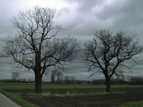 gvi-kretschmar-inden-altdorf-2001 41