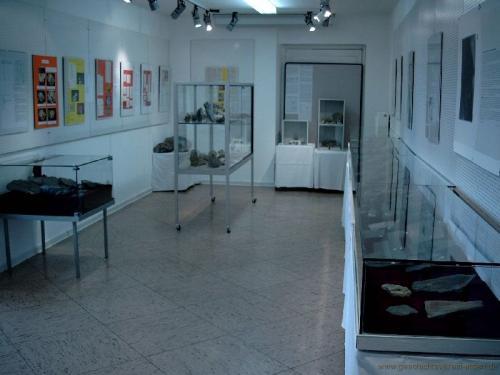 gvi-ausstellung-fossilien 19